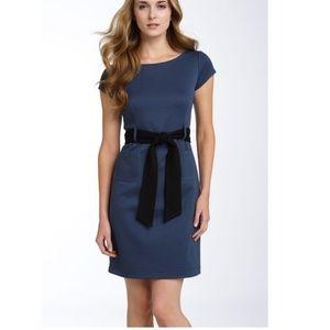 Theory Salmona Adhere Ponte Knit Sheath Dress